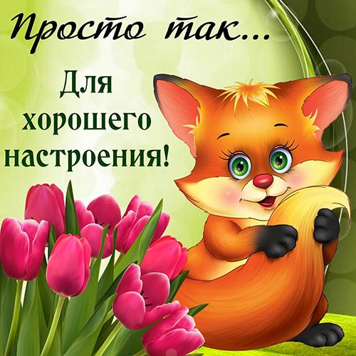 Смс пожелания прекрасного настроения и хорошего дня