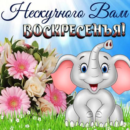 Хорошего воскресного дня и отличного настроения