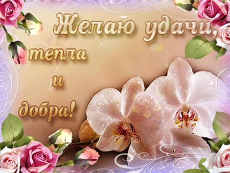 Открытки с добрыми пожеланиями счастья добра и здоровья
